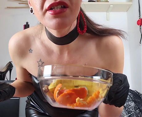 Dog Training - eating all my spit and piss
